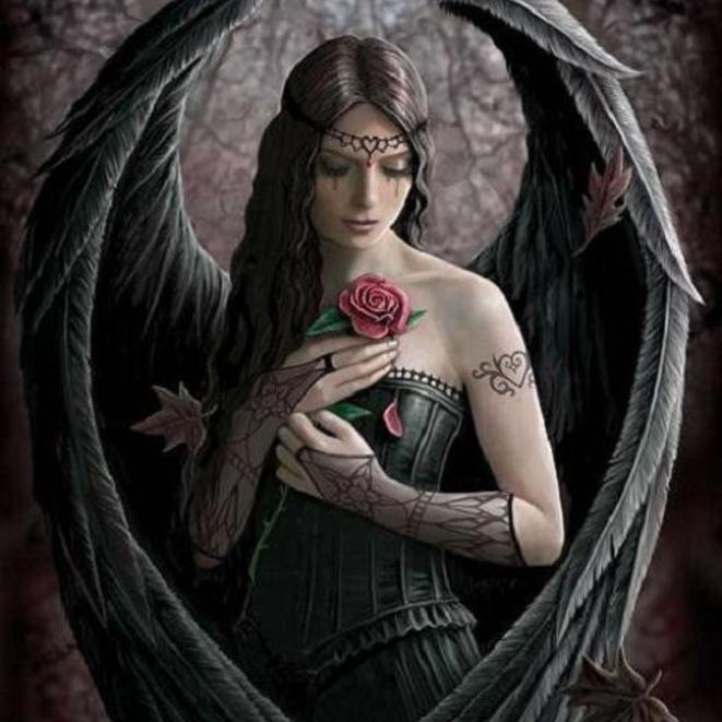 angel33